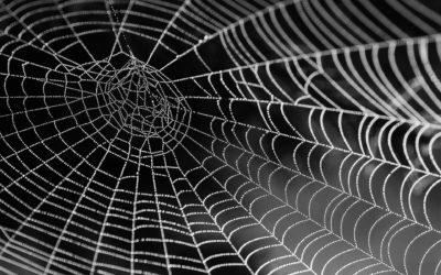 Le concept de l'araignée
